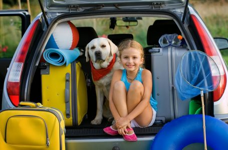 Travelling With Kids And Pets? Here Are 20 Useful Travelling Tips